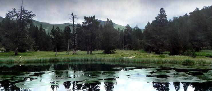 Pirineos6