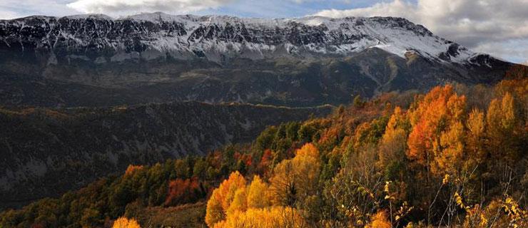Pirineos9